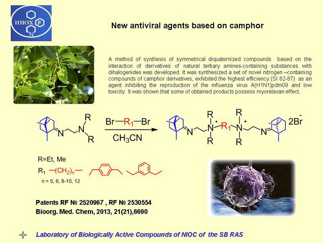 New antiviral agents based on camphor