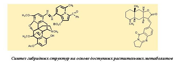 met_compl_catalysis_2